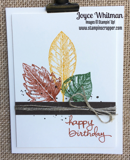 stampin up, Stampin' Up!, Vintage Leaves stamp set, Endless Birthday Wishes stamp set Gorgeous Grunge stamp set, designed by Stampin Scrapper.  Please see more card and gift ideas at stampinscrapper.com  #stampin_scrapper #butterflies, babies and stamping