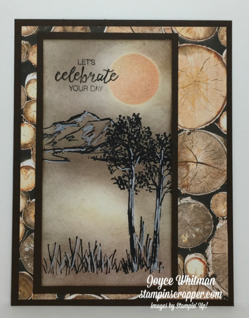 stampin up, Stampin' Up! In The Meadow #140754, Wood Textures DSP #144177,  designed and created by Stampin Scrapper, for more cards, gifts, ideas, scrapbooking and 3D projects go to stampinscrapper.com, Joyce Whitman