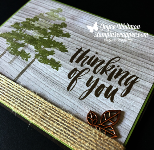 Stampin Up, Stampin' Up! Rooted In Nature Stamp Set #146482, Leaves Trinkets #146343, Wood Textures Designer Series Paper #144177, created by Stampin Scrapper, for more cards, gifts, ideas, scrapbooking and 3D projects go to stampinscrapper.com, Joyce Whitman