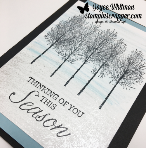 Stampin Up, Stampin' Up! Winter Woods stamp set #147661, Watercolor Pencils #141709,  Frost White Shimmer Paint #147046, CASEing Tuesday, created by Stampin Scrapper, for more cards, gifts, ideas, scrapbooking and 3D projects go to stampinscrapper.com, Joyce Whitman