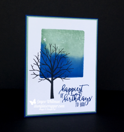 Stampin Up, Stampin' Up! Sheltering Tree stamp set #137163, Picture Perfect Birthday stamp set #1455119, Ink Block Technique, created by Stampin Scrapper, for more cards, gifts, ideas, scrapbooking, 3D projects go to stampinscrapper.com, Joyce Whitman