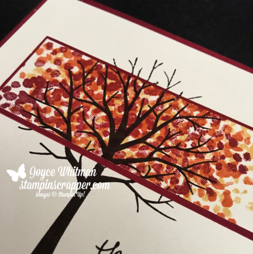 Stampin Up, Stampin' Up! Sheltering Tree stamp set #137163, Spotlight Technique, created by Stampin Scrapper, for more cards, gifts, ideas, scrapbooking and 3D projects, go to stampinscrapper.com, Joyce Whitman